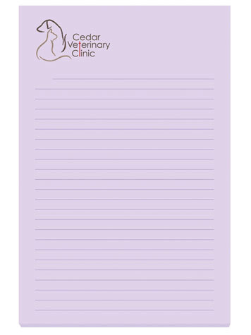 Customizable 4 x 6 Adhesive Notepads