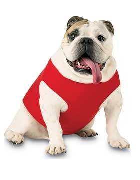 <b>Doggie Rib Tank</b>